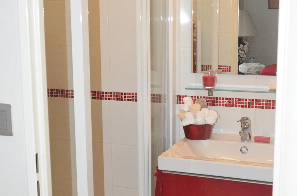 Salon-De-Massage-Huiles-Essentielles-Marne-La-Vallee